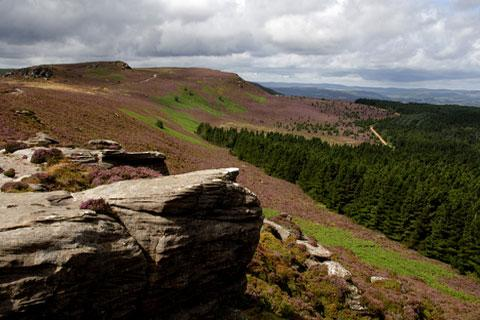 Photo of Northumberland National Park in Northumberland National Park (Northumberland region)