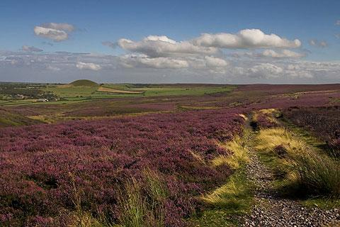 Photo of Yorkshire Moors in Yorkshire Moors (North Yorkshire region)