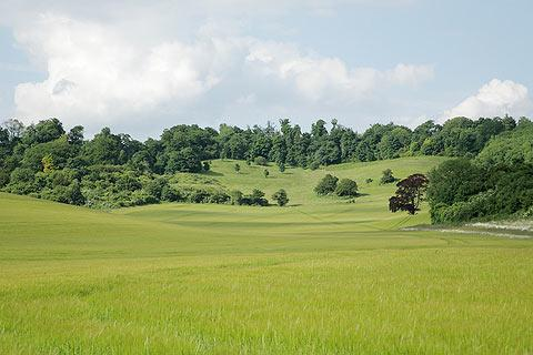 Photo of Kent Downs in Kent Downs (Kent region)