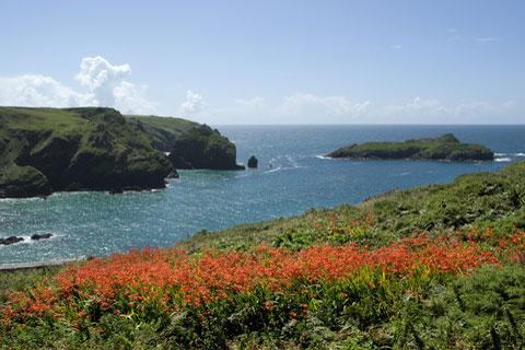Photo of Mullion in Cornwall (Cornwall region)
