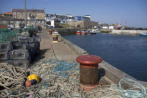 Photo of Seahouses in Northumberland Coast (Northumberland region)