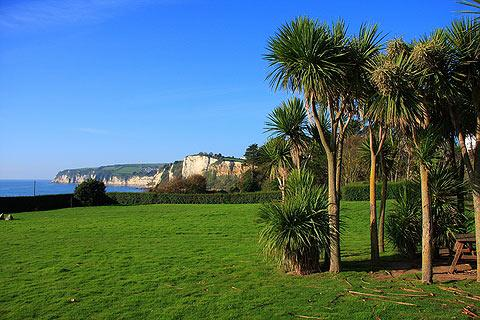 Photo of East Devon in East Devon (Devon region)