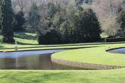 water-garden1